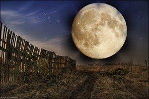 луна в знаке тельца