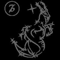гороскоп на неделю козерог